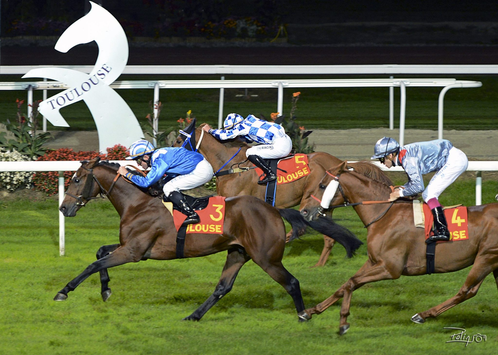 SIVIT AL MAURY, winner of the French Arabian Breeders' Challenge Sprint, Listed PA, Toulouse